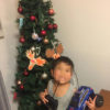 我が家の2016年のクリスマス