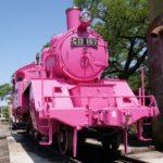 鳥取帰省(3)~若桜鉄道でピンクのSLを見てきました!!